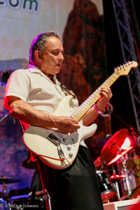 Blues on the green _Jimmy Vaughan_6_3_15-3