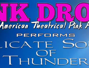 Pink Droyd Brings the Delicate Sound of Thunder to Indiana